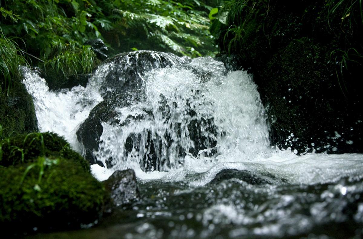 新潟の清らか雪解け天然水