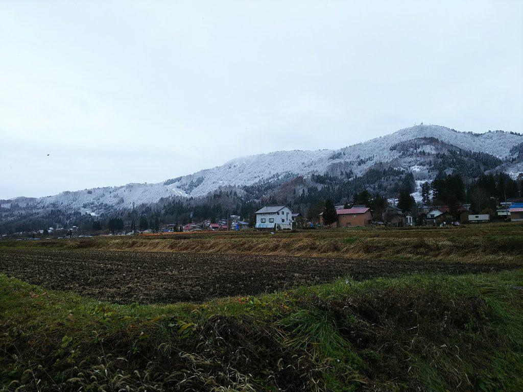 裏山の景色