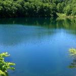 小境のため池 桂池